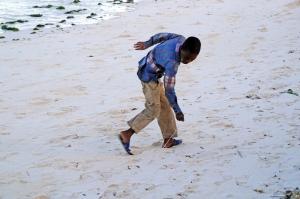 jambiani-beach-crab-walker