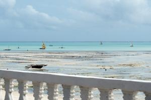 jambiani-breakfast-view