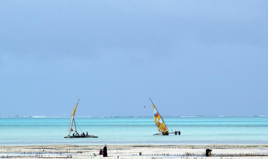 jambiani-fishing-boats