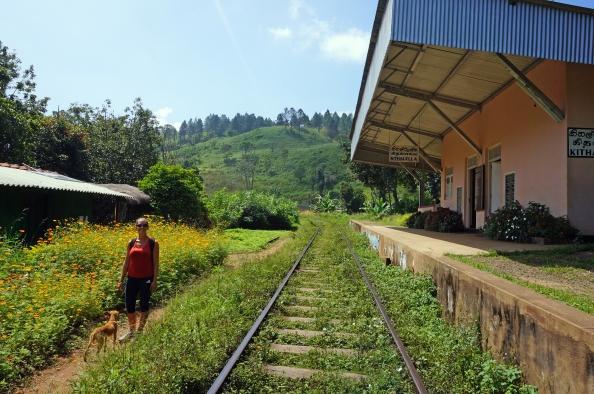 On the Ella railway track