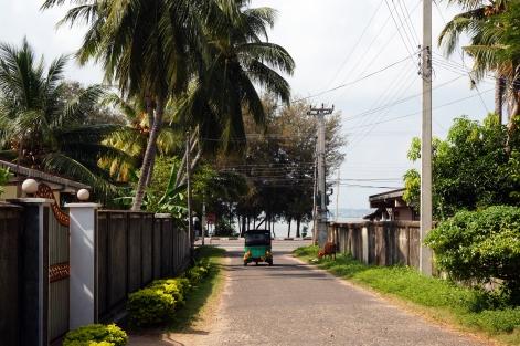 Exploring Trincomalee