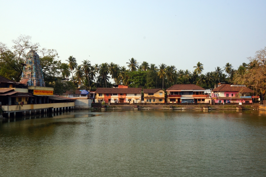 calicut-tali-temple-pond-01