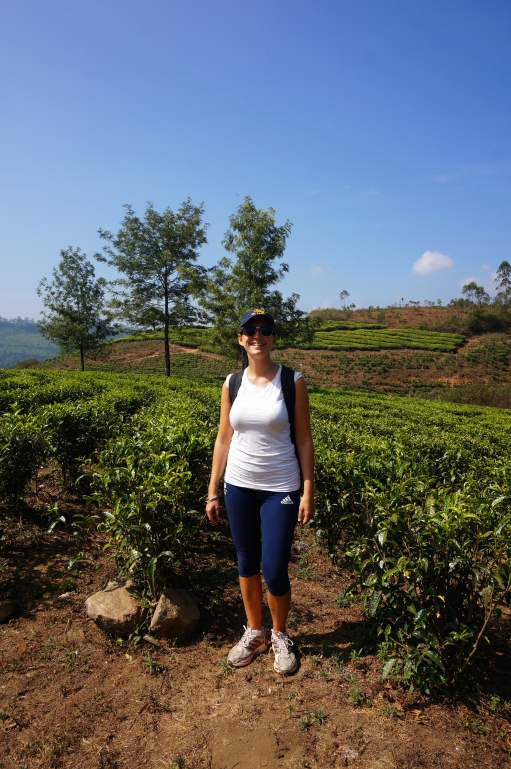 We started our walk through the tea fields