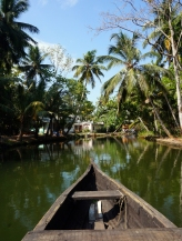 We entered the backwaters along the main Munroe Island canal