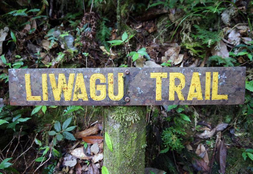 kinabalu-national-park-jungle-trek-02-840