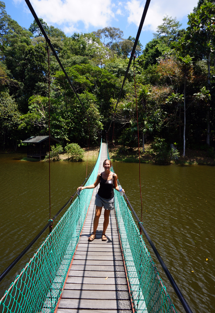 sepilok-rdc-rope-bridge-soph-01-740