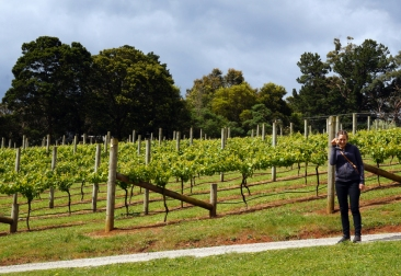 Exploring Green Olive at Red Hill