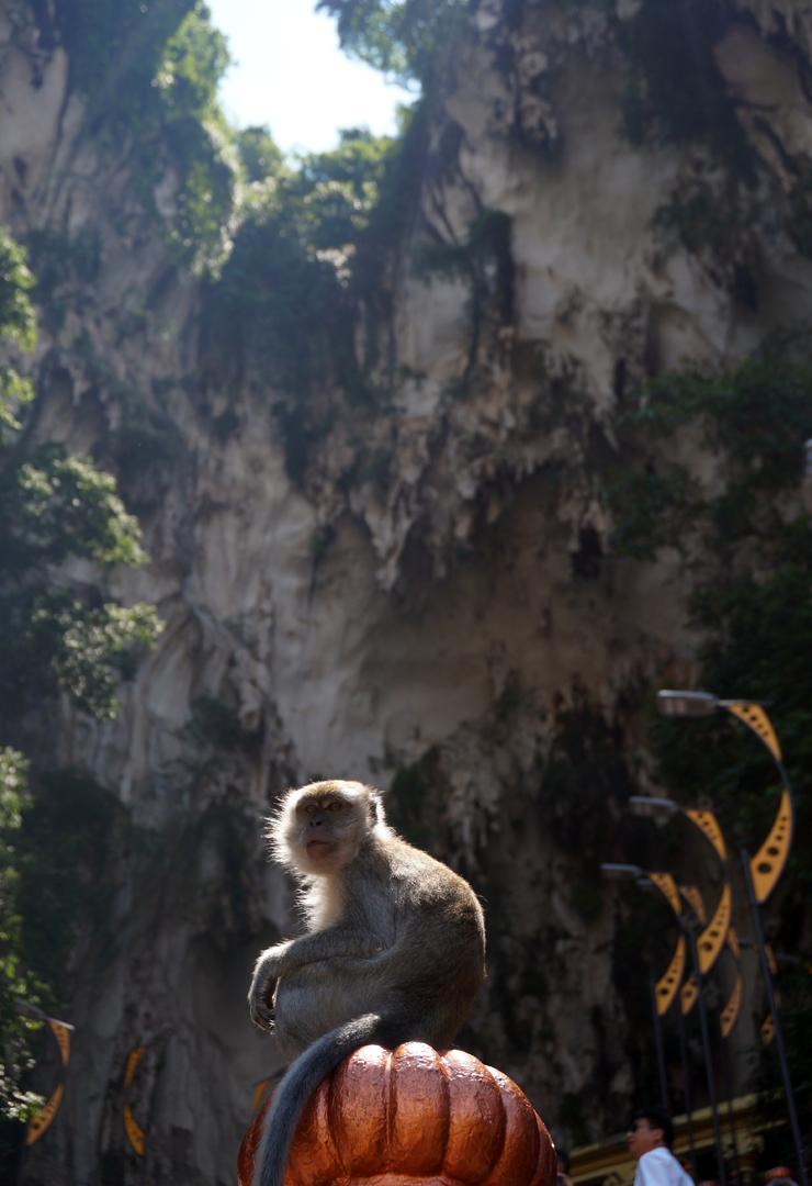 kl-batu-caves-04-740