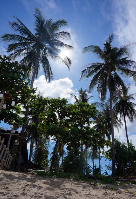 koh-lanta-klong-kong-beach-01-740