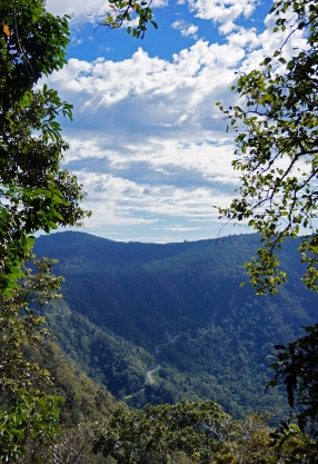 Epic views from the walks in Eungella.