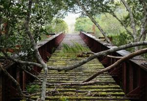 tablelands-railway-01-840